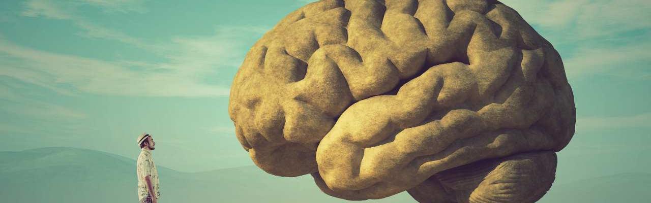 Breinproductiviteit en stress