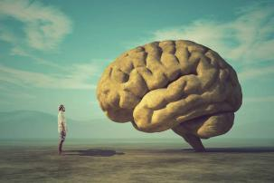 Breinproductiviteit & stress