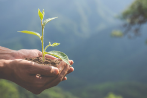 Sustainability: not just a trend but a game changer